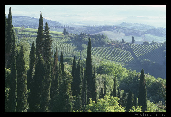 View from San Gimignano, Tuscany